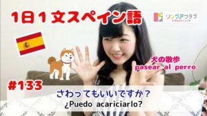 1日1文スペイン語(#133) - さわってもいいですか?
