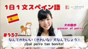 1日1文スペイン語(#137) - なんてかわいい(きれいな)犬なんでしょう!